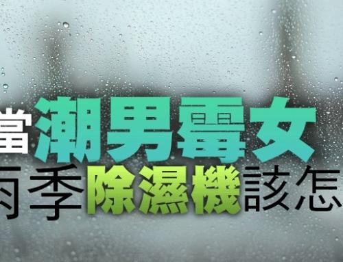 拒當「潮男霉女」!梅雨季除濕機該怎麼用?